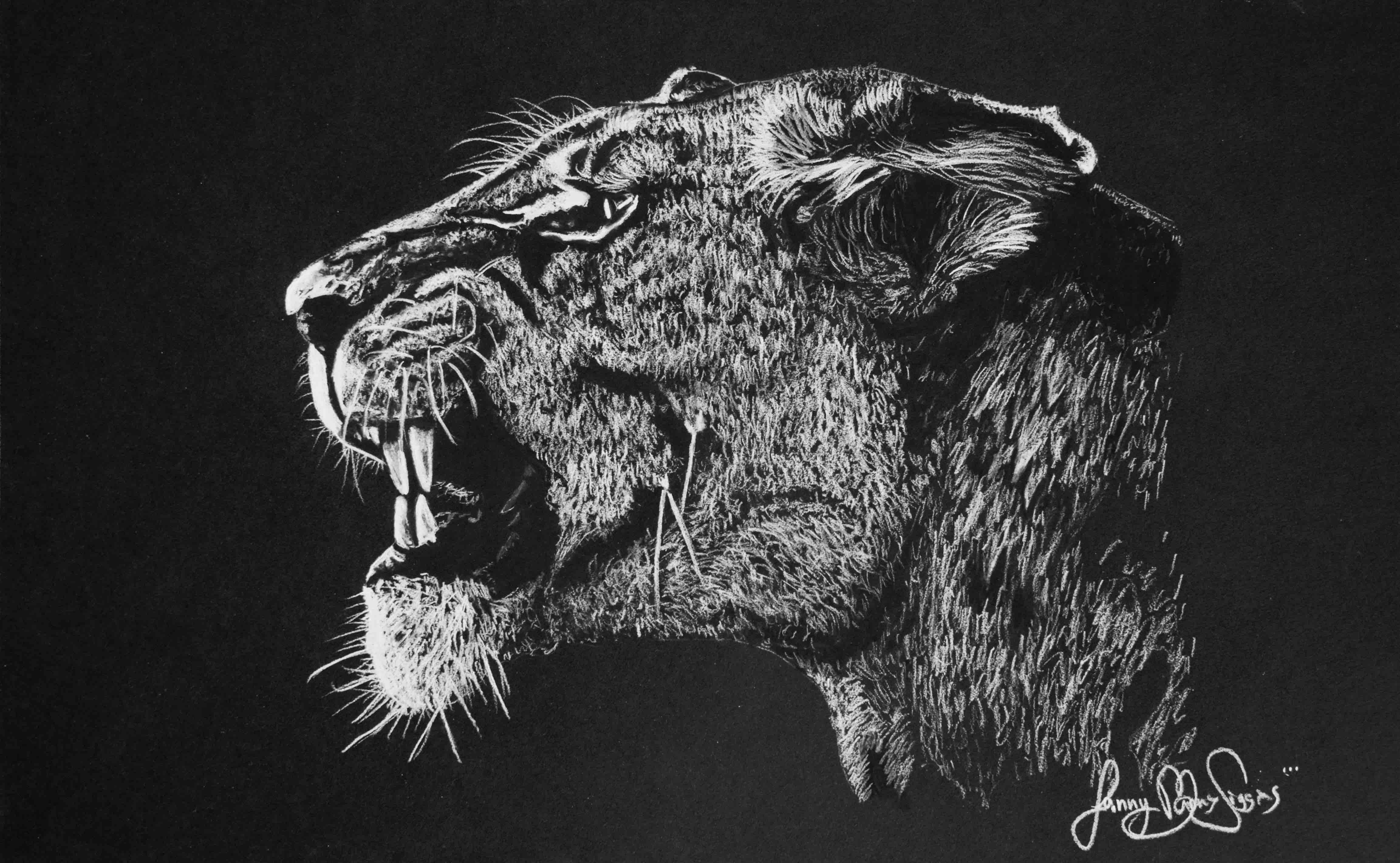 Big 5 Lion